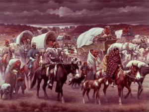 """Trail of Tears"" by Robert Lindneux"