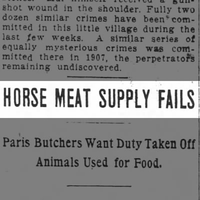 Horse meat shortage