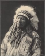 29 - Chief American Horse, Sioux