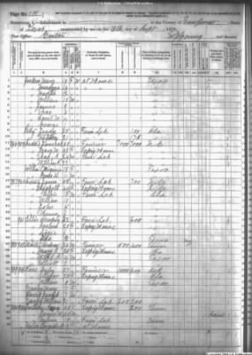 1870 Van Zandt County, Texas census