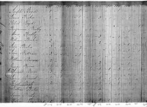 Robert Bogle 1800 Census.jpg