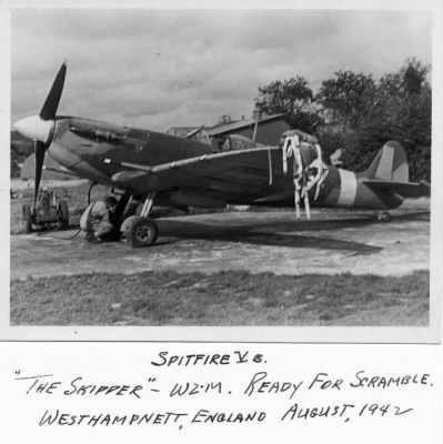 Spitfire of 309th Fighter Squadron - Fold3.com