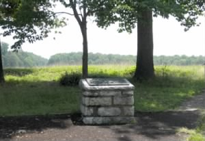 Battle of the Wilderness Monument.jpg