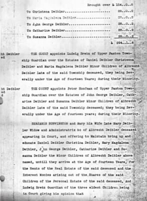 Deibler Orphans Court Record #3.jpg