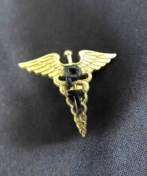 Army Physical Therapy insignia.jpg
