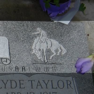 A Horse on the Headstone